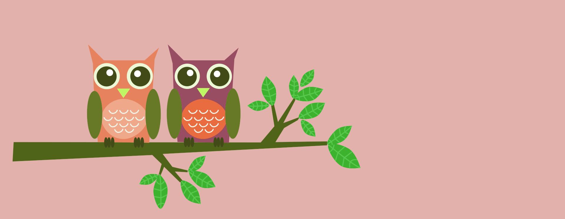 owls-2663351